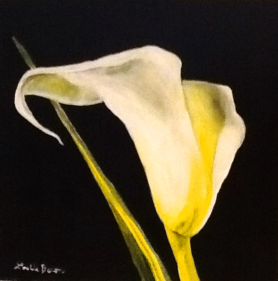 "Copyright Lorelle Bacon Asheville Area Artist - ""Lily on Black"""