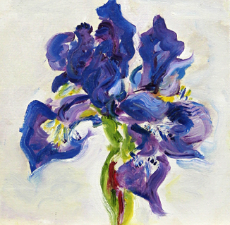 Iris Oil painting by Asheville area artist Mary Filiss
