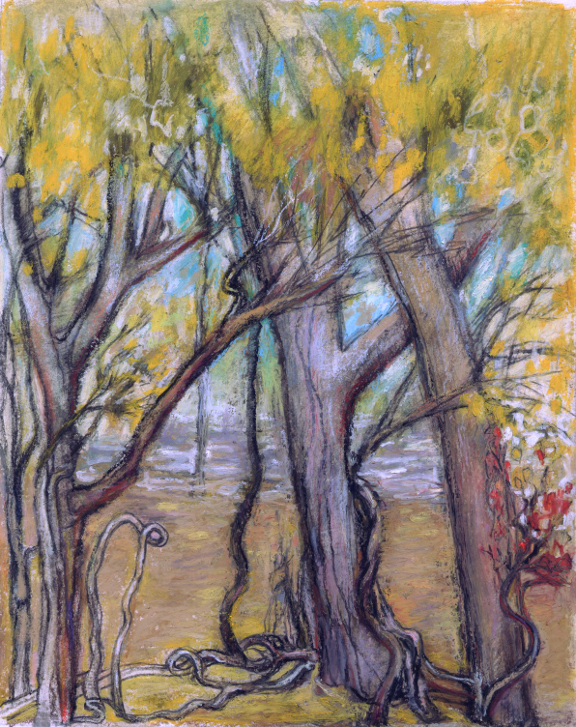 """November"" oil pastel and pencil by Asheville area artist Dixie Damron"